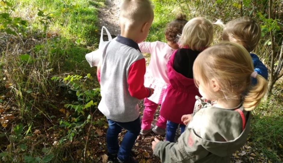 samen het bos ontdekken 1