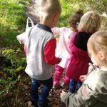 samen het bos ontdekken